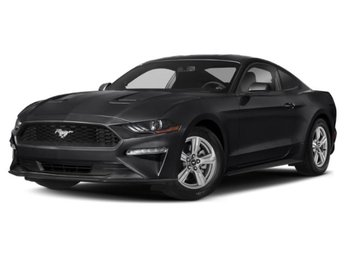 2019 Shadow Black Ford Mustang EcoBoost RWD Coupe EcoBoost 2.3L I4 GTDi DOHC Turbocharged VCT Engine Automatic