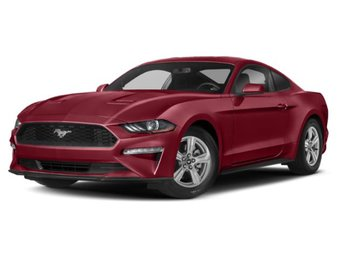 2019 Ruby Red Metallic Tinted Clearcoat Ford Mustang EcoBoost Coupe RWD Automatic