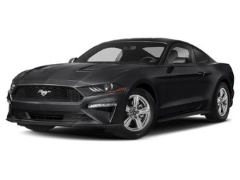 2019 Ford Mustang EcoBoost EcoBoost 2.3L I4 GTDi DOHC Turbocharged VCT Engine RWD Coupe