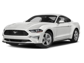 2019 Oxford White Ford Mustang EcoBoost EcoBoost 2.3L I4 GTDi DOHC Turbocharged VCT Engine 2 Door Automatic Coupe RWD