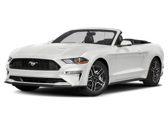 2019 Oxford White Ford Mustang GT Premium Automatic Convertible 5.0L V8 Ti-VCT Engine 2 Door