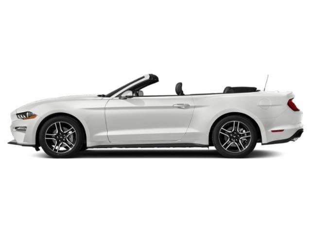 2019 Oxford White Ford Mustang GT Premium 5.0L V8 Ti-VCT Engine Convertible 2 Door