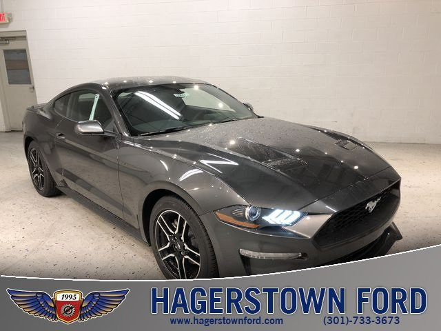 2019 Magnetic Metallic Ford Mustang EcoBoost EcoBoost 2.3L I4 GTDi DOHC Turbocharged VCT Engine Automatic 2 Door RWD Coupe