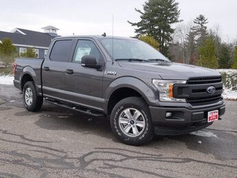 2020 Gray Ford F-150 XL 4X4 Automatic Truck