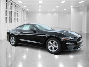 2019 Shadow Black Ford Mustang EcoBoost 2 Door Automatic RWD Intercooled Turbo Premium Unleaded I-4 2.3 L/140 Engine Coupe