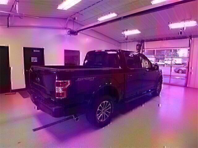 2020 Agate Black Metallic Ford F-150 XLT 2.7L V6 EcoBoost Engine 4X4 Automatic Truck 4 Door