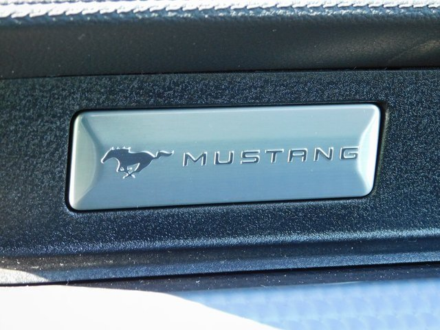 2019 Ford Mustang GT 2 Door RWD Automatic Coupe 5.0L V8 Ti-VCT Engine