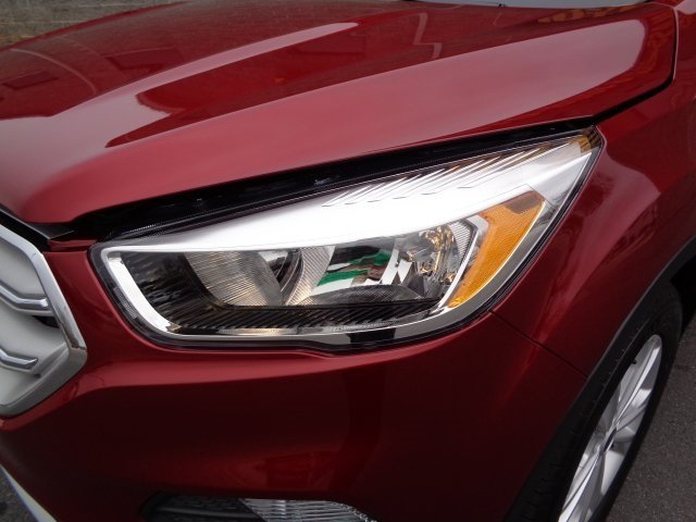 2019 Ruby Red Metallic Tinted Clearcoat Ford Escape SE EcoBoost 1.5L I4 GTDi DOHC Turbocharged VCT Engine FWD 4 Door Automatic SUV