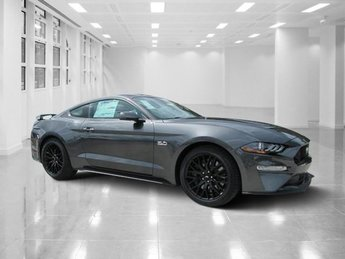 2019 Magnetic Metallic Ford Mustang GT 2 Door Manual Coupe RWD Premium Unleaded V-8 5.0 L/302 Engine
