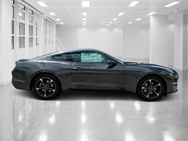 2019 Magnetic Metallic Ford Mustang EcoBoost Automatic Coupe Intercooled Turbo Premium Unleaded I-4 2.3 L/140 Engine