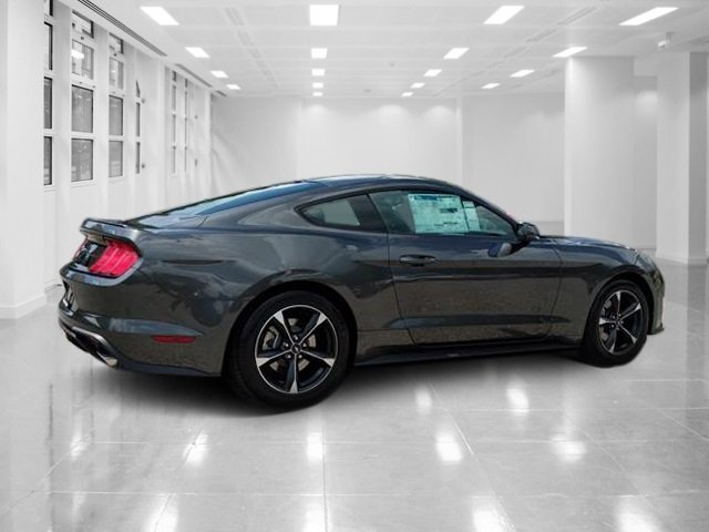 2019 Magnetic Metallic Ford Mustang EcoBoost Automatic Coupe RWD