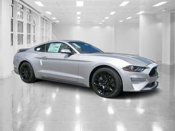 2019 Ingot Silver Metallic Ford Mustang EcoBoost Premium 2 Door Manual Intercooled Turbo Premium Unleaded I-4 2.3 L/140 Engine RWD Coupe