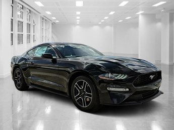 2019 Shadow Black Ford Mustang EcoBoost Premium Coupe Intercooled Turbo Premium Unleaded I-4 2.3 L/140 Engine 2 Door RWD Automatic