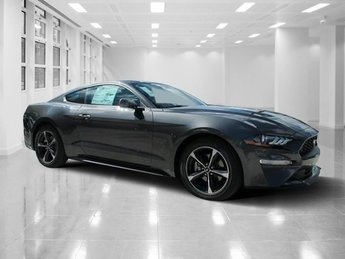 2019 Magnetic Metallic Ford Mustang EcoBoost 2 Door RWD Manual