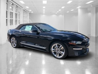 2019 Shadow Black Ford Mustang EcoBoost Premium Intercooled Turbo Premium Unleaded I-4 2.3 L/140 Engine RWD 2 Door Automatic