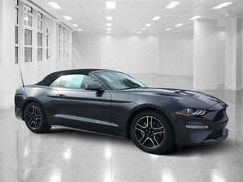 2019 Magnetic Metallic Ford Mustang EcoBoost Premium Convertible 2 Door RWD