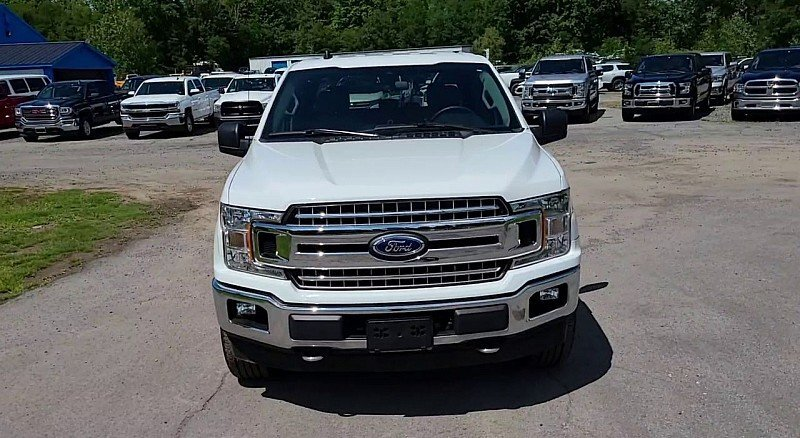 2019 Oxford White Ford F-150 XLT V8 Flex Fuel 5.0 Liter Engine Truck Automatic 4X4 4 Door