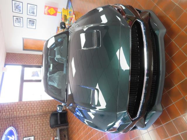 2019 Dark Highland Green Metallic Ford Mustang Bullitt Fastback Gas I8 5.0L Engine 2 Door Manual