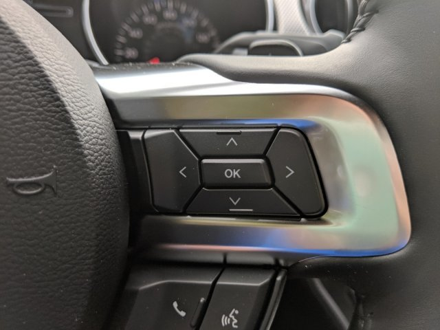 2019 Ford Mustang GT Automatic Coupe Premium Unleaded V-8 5.0 L/302 Engine