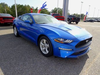 2019 Blue Metallic Ford Mustang EcoBoost Coupe EcoBoost 2.3L I4 GTDi DOHC Turbocharged VCT Engine RWD