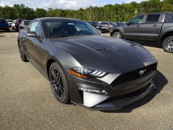 2019 Magnetic Ford Mustang EcoBoost Premium 2 Door EcoBoost 2.3L I4 GTDi DOHC Turbocharged VCT Engine RWD Coupe Automatic