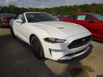 2019 Ford Mustang EcoBoost Premium Convertible 2 Door EcoBoost 2.3L I4 GTDi DOHC Turbocharged VCT Engine