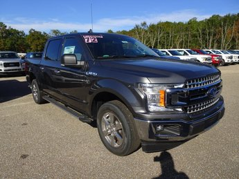 2019 Magnetic Metallic Ford F-150 XLT Automatic 4 Door 5.0L V8 Ti-VCT Engine Truck