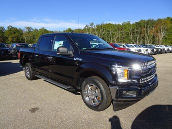 2019 Black Metallic Ford F-150 XLT RWD 5.0L V8 Ti-VCT Engine Automatic Truck