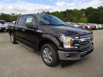 2019 Magma Red Ford F-150 XLT Automatic RWD 4 Door