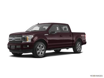 2019 Magma Red Ford F-150 XLT Truck 4X4 5.0L V8 Ti-VCT Engine 4 Door
