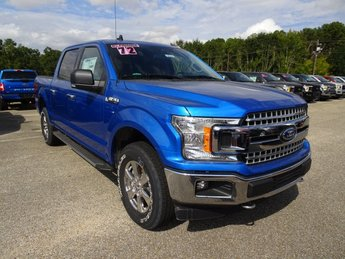 2019 Velocity Blue Metallic Ford F-150 XLT 4 Door 4X4 5.0L V8 Ti-VCT Engine
