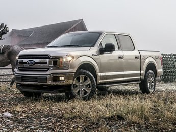 2019 Ingot Silver Metallic Ford F-150 XLT 4X4 Truck EcoBoost 2.7L V6 GTDi DOHC 24V Twin Turbocharged Engine Automatic