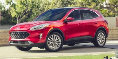 2020 OXFORD_WHITE Ford Escape SE Automatic FWD SUV