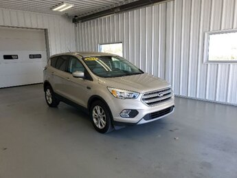 2017 White Gold Metallic Ford Escape SE Automatic SUV FWD 4 Door