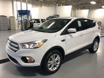 2019 Ford Escape SE 4 Door 4X4 Automatic SUV 1.5L Ecoboost Engine