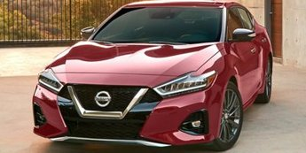 2019 Pearl White Tricoat Nissan Maxima SV Premium Unleaded V-6 3.5 L/213 Engine 4 Door Automatic (CVT)